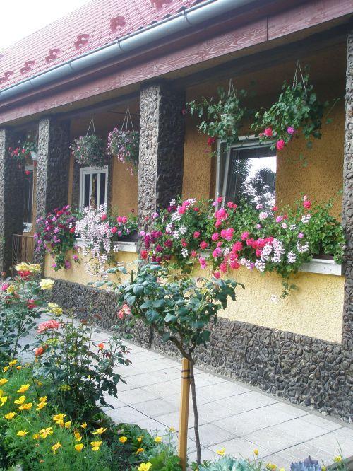 Najkrajšia záhradka 2009